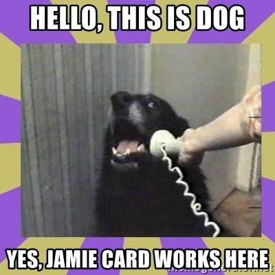 Yes, this is dog! - Hello, this is dog yes, jamie card works here
