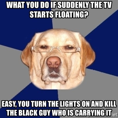 Racist Dawg - WHAT YOU DO IF SUDDENLY THE TV STARTS FLOATING? EASY, YOU TURN THE LIGHTS ON AND KILL THE BLACK GUY WHO IS CARRYING IT