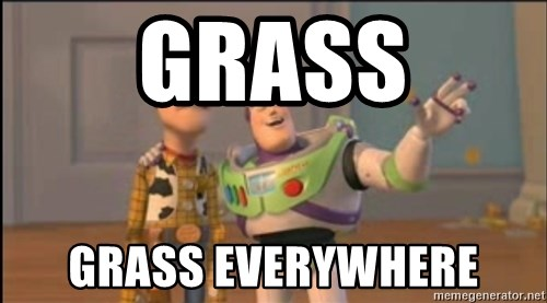 X, X Everywhere  - Grass Grass Everywhere