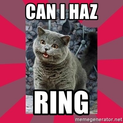 I can haz - CAN I HAZ RING