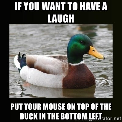 good advice duck - if you want to have a laugh put your mouse on top of the duck in the bottom left