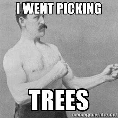 overly manlyman - I WENT PICKING  TREES