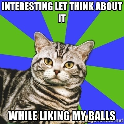 Introvert Cat - INTERESTING LET THINK ABOUT IT WHILE LIKING MY BALLS