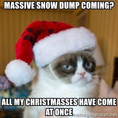 Grumpy Cat Santa Hat - Massive snow dump coming? All my christmasses have come at once
