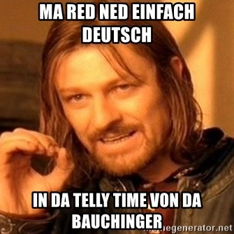 One Does Not Simply - ma red ned einfach deutsch in da telly time von da bauchinger