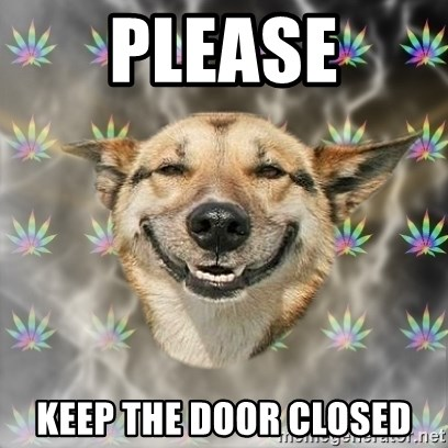 Stoner Dog - please keep the door closed