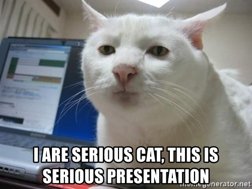 Serious Cat -  I are serious cat, this is serious presentation