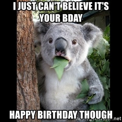 Koala can't believe it - I just can't believe it's your bday Happy birthday though