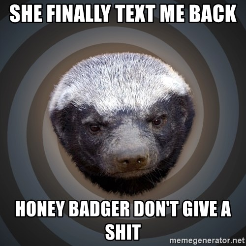 Fearless Honeybadger - she finally text me back Honey Badger don't give a shit