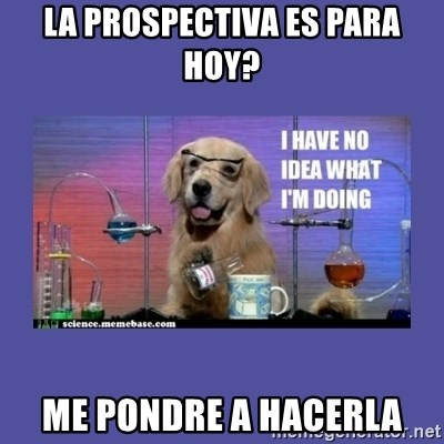 I don't know what i'm doing! dog - La prospectiva es para hoy? me pondre a hacerla