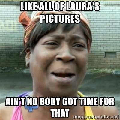 Ain't Nobody got time fo that - like all of laura's pictures ain't no body got time for that