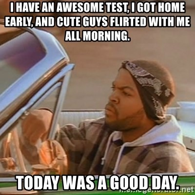 Good Day Ice Cube - I have an awesome test, I got home early, and cute guys flirted with me all morning. Today was a good day.