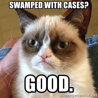 Grumpy Cat  - Swamped with cases? GOOD.