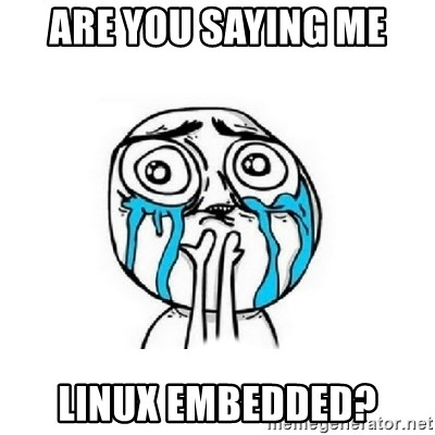 Crying face - Are you saying me Linux embedded?