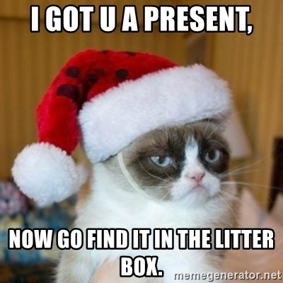 Grumpy Cat Santa Hat - I got u a present, now go find it in the litter box.