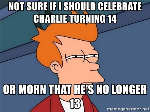 Futurama Fry - Not Sure if I should celebrate Charlie turning 14 or morn that he's no longer 13