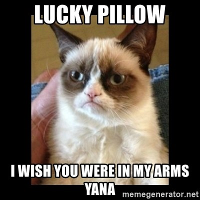 Frowning Cat - lucky pillow I wish you were in my arms Yana