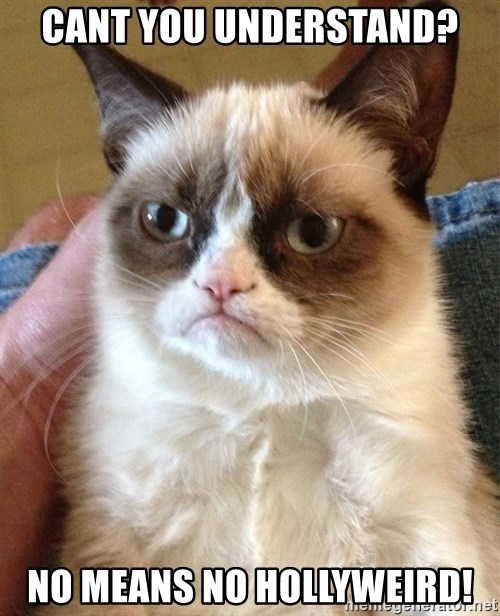 Grumpy Cat Face - CANT YOU UNDERSTAND? NO MEANS NO HOLLYWEIRD!