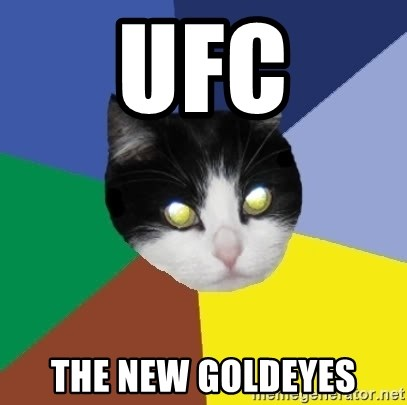 Winnipeg Cat - UFC the new goldeyes
