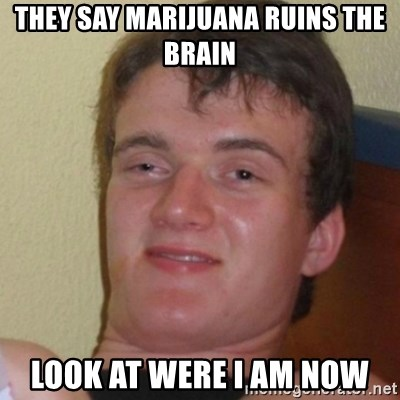 Stoner Stanley - They Say Marijuana ruins the brain Look at were i am now