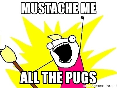 X ALL THE THINGS - mustache me all the pugs