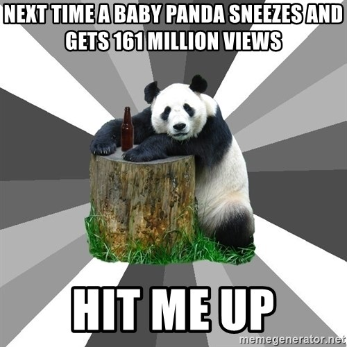 Pickup Line Panda - Next time a baby panda sneezes and gets 161 million views Hit me up