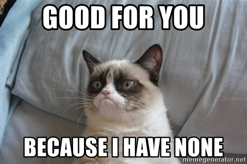 Grumpy cat good - Good for you Because i have none