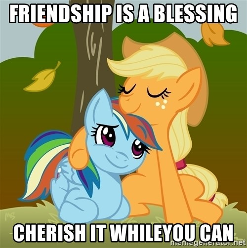 My Little Pony - friendship is a blessing cherish it whileyou can