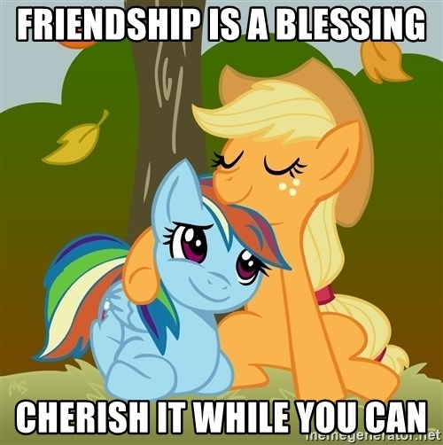 My Little Pony - friendship is a blessing cherish it while you can