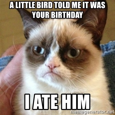 Grumpy Cat  - a little bird told me it was your birthday i ate him