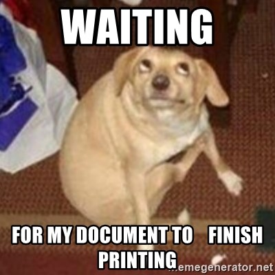 Oh You Dog - waiting  for my document to    finish printing