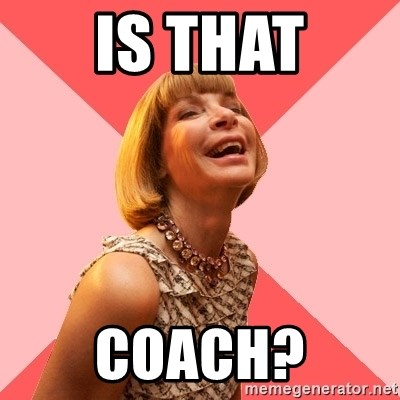 Amused Anna Wintour - Is That COACH?