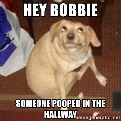 Oh You Dog - Hey Bobbie Someone pooped in the hallway