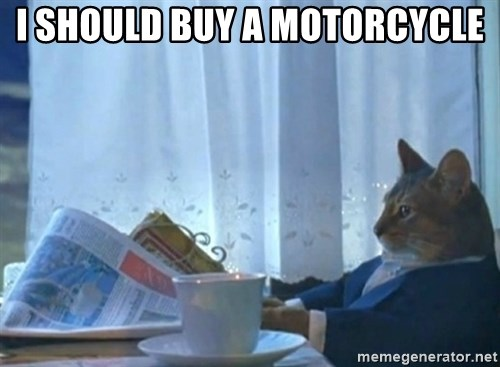 Sophisticated Cat - i should buy a motorcycle