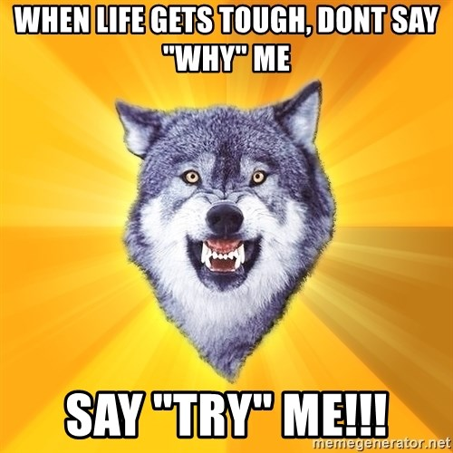 """Courage Wolf - when life gets tough, dont say """"why"""" me SAY """"TRY"""" ME!!!"""