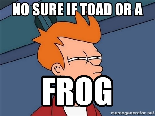 Futurama Fry - no sure if toad or a Frog