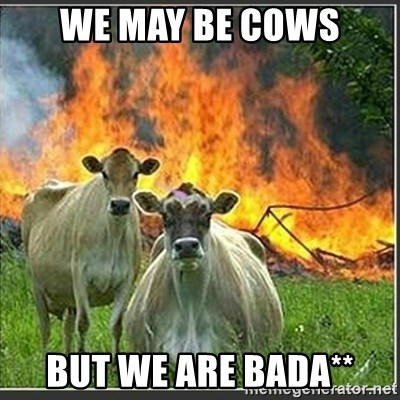 Evil Cows - We may be cows but we are bada**