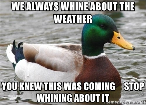 Actual Advice Mallard 1 - we always whine about the weather you knew this was coming     stop whining about it