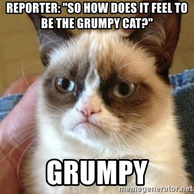 """Grumpy Cat  - Reporter: """"So how does it feel to be the grumpy cat?"""" Grumpy"""