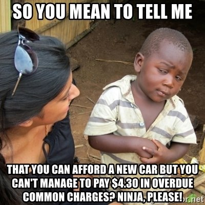 Skeptical 3rd World Kid - So you mean to tell me that you can afford a new car but you can't manage to pay $4.30 in overdue common charges? Ninja, please!