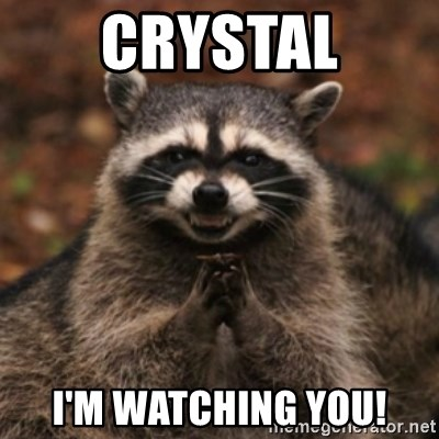 evil raccoon - CRYSTAL I'M WATCHING YOU!