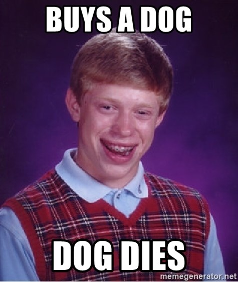 Bad Luck Brian - buys a dog dog dies