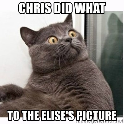 Conspiracy cat - Chris did what to the elise's picture