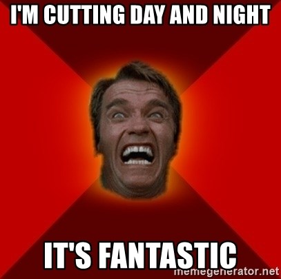 Angry Arnold - I'm CUTTING DAY AND NIGHT IT's fantastic