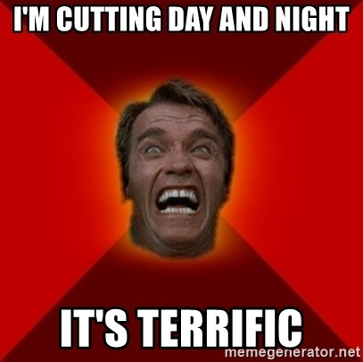 Angry Arnold - i'm cutting day and night it's terrific
