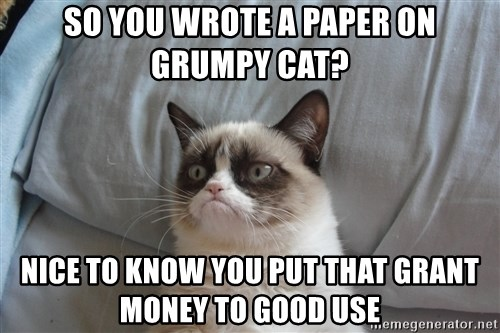 good grumpy cat 2 - so you wrote a paper on grumpy cat? nice to know you put that grant money to good use