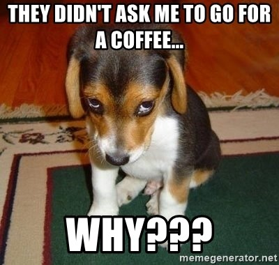 Sad Puppy - THEY DIDN'T ASK ME TO GO FOR A COFFEE...  WHY???