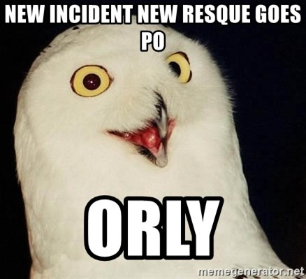 Orly Owl - new incident new resque goes po orly