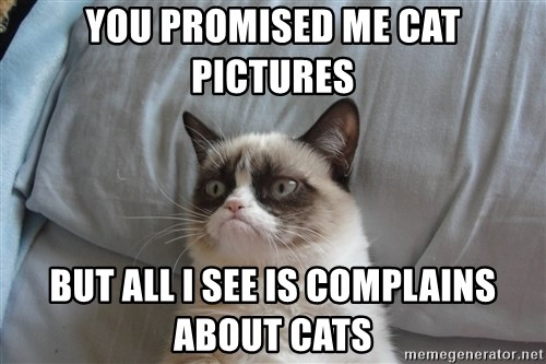 good grumpy cat 2 - You promised Me cat pictures But all i see is complains about cats