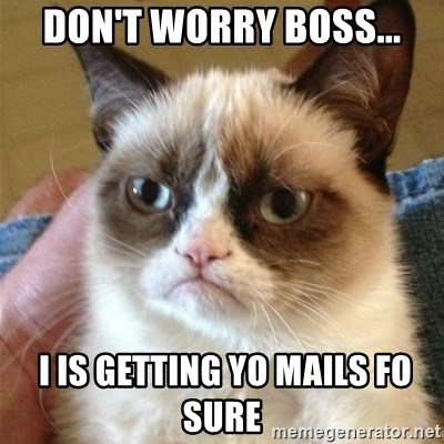 Grumpy Cat  - Don't worry boss...  I IS GETTING YO MAILS fo sure